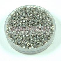 Miyuki Delica Japanese Seed Bead size : 11/0 - 0251 Galvanized Gray Luster 20g